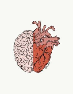 head or heart? Brain Art, Brain Drawing, Medical Wallpaper, Medical Art, Heart Art, Art Plastique, Cute Wallpapers, Art Inspo, Cool Art
