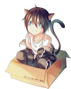 The black kitten with beautiful blue eyes, named Yato. Find Hioyri... but she wouldn't give you him. Cause she need him.