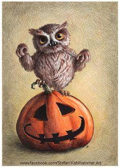 .pumpkin + owl = Halloween!