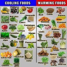 cooling warming foods Chinese medicine traditional http://jjbjorkman.blogspot.com/2013/09/cooling-and-warming-foods.html