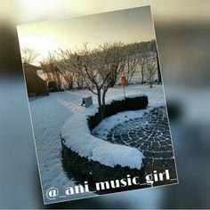 #snow #circle #gold #winter