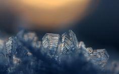 Icy by Mr808.deviantart.com on @deviantART