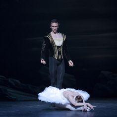 Daria Klimentova & Vadim Muntagirov in Swan Lake, English National Ballet - Ballet, балет, Ballett, Ballerina, Балерина, Ballarina, Dancer, Dance, Danza, Danse, Dansa, Танцуйте, Dancing