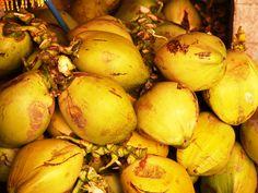 Fresh coconuts - Puerto Vallarta '09