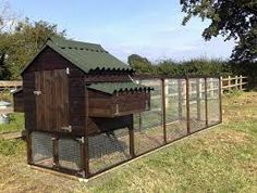 home made chicken coops - Google Search
