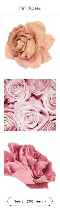 """""""Pink Roses"""" by adorablequeen ❤ liked on Polyvore featuring jewelry, brooches, pink, vintage jewellery, flower brooch, rose flower jewelry, rose jewellery, flower jewellery, home and home decor"""
