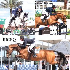 Need a jumper? Shop Bigeq.com! Selling a jumper? Use Bigeq.com! Such an exciting week at WEF with the top three riders in the world all competing. #bigeq #hunterjumper #ushja #usef #showjumping #showjumper (at WEF - Winter Equestrian Festival)