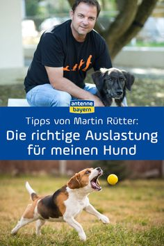 So ticken Hunde wirklich: Tipps von Martin Rütter Professional dog Martin Rütter answers your questions about human-dog relationships, training, upbringing, bonding and keeping dogs. Custom Logo Design, Custom Logos, Pet Clothes, Dog Clothing, Pet Beds, Pet Health, Crochet Animals, Dog Accessories, Exotic Pets