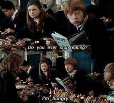 você nunca parar de comer? Estou com fome