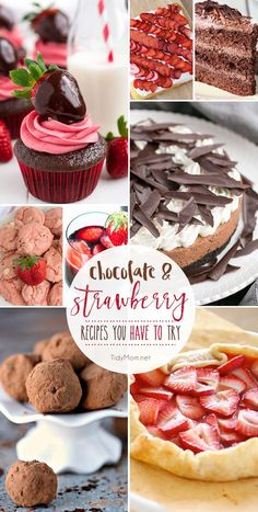 When you need a dessert that is sure to impress, you can't go wrong with Chocolate and Strawberry recipes. Together or all on their own, they're always a hit from cupcakes and truffles, to tarts, cakes, cookies and more! Get 28 Chocolate and Strawberry Recipes you have to try at TidyMom.net perfect for Valentines Day or any occasion.