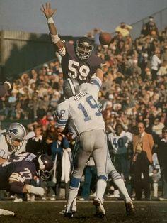 Nfl Detroit Lions, Detroit Sports, Minnesota Vikings Football, Dallas Cowboys, Steelers And Browns, Nfl Photos, Vintage Football, Sport Football, Wolverines