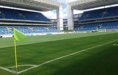 Com ataques em alta, Ponte Preta e Palmeiras se enfrentam em Cuiabá