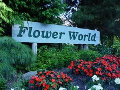 Flower World, Maltby. Huge, beautiful greenhouses to wander, even has a turtle pond. When it's nice out, you can see their chickens, geese, goats, sheep, and peacocks.