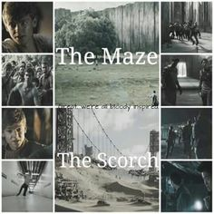 The Maze Runner and The Scorch Trials Maze Runner Funny, Maze Runner Thomas, Maze Runner Trilogy, Maze Runner Series, The Fever Code, Amazing Maze, James Dashner, The Scorch Trials, Divergent Series