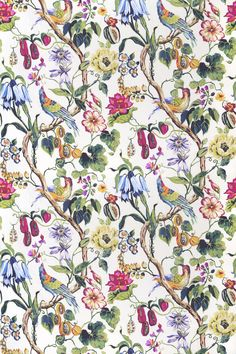 Madagascar Rainforest (8529/675) - Prestigious Fabrics - A bold, wide width stylised floral trail with exotic fruits and bright birds. Shown here in fuchsia pink, green and blue on an off white background. Other colourways are available. Please request a sample for a true colour match.