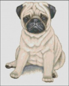 This pattern is of a sitting fawn Pug puppy and uses 24 colours. The pattern size is 100 x 124 stitches. Each chart is printed over four pages and