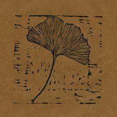 Ginkgo Leaf   Flickr - Photo Sharing!