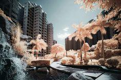 Photographie en infrarouge, by Yiu Yu Hoi.