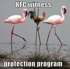 KFC witness protection program