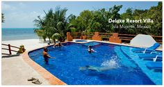casa mimosa, pool, isla mujer