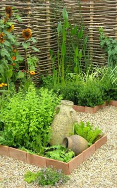Ein Beetrand aus rustikalen Ziegeln eignet sich besonders für Küchengärten und Kräuter- oder Gemüsebeete. So lässt sich durch die Abtrennung unterschiedlicher Bereiche Ordnung schaffen.