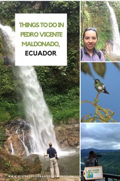 Things to do in Pedro Vicente Maldonado, Ecuador - Visit Ecuador and South America Ecuador, Stuff To Do, Things To Do, Just Dream, Galapagos Islands, Plan Your Trip, South America, Humid Weather, Spanish Speaking Countries