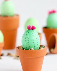 #DIY #Cactus #Eggs www.kidsdinge.com                            http://instagram.com/kidsdinge          https://www.facebook.com/kidsdinge/ #kidsdinge #Kids