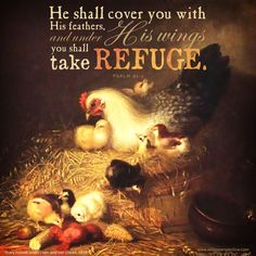 psalm 91, the place of refuge | christine's bible study at a little perspective