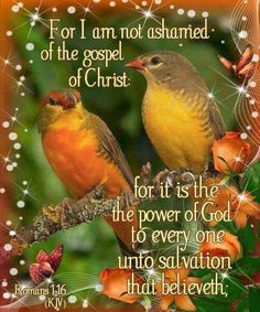 Image result for pretty images of birds with bible verses and blessings