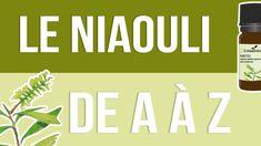 Huile essentielle de Niaouli : comment l'utiliser correctement ? Youtube, Doterra Essential Oils, Naturopathy, Buddhism, Youtubers, Youtube Movies