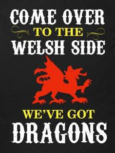 We've got dragons! Welsh Words, Welsh Sayings, Learn Welsh, Welsh Language, Welsh Gifts, North Wales, Wales Uk, Welsh Dragon, Got Dragons
