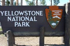 TIPS FOR TENT CAMPING IN YELLOWSTONE NATIONAL PARK