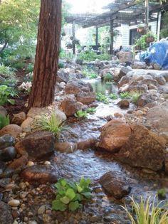 Ponds, Streams & Pondless Waterfalls