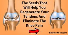 The Seeds That Will Help You Regenerate Your Tendons And Eliminate The Knee Pain – Cuisine & Health Magazine