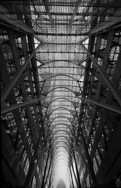 Allen Lambert Galleria at Brookfield Place. Photography by Jeanne Mcright. Atrium designed by Santiago Calatrava.