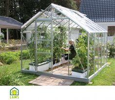 Serre de jardin en verre MERKUR. Dimensions : 2,57m x 3,21m.