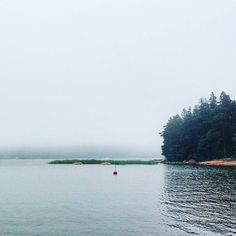 The last morning at the cottage we had fog. So much fog I couldn't see the next island when I woke up at 6am but luckily it had cleared enough by 10am that we could faintly see the shoreline in the distance. That's when we got in the boat and drove back to mainland to catch our flight at 2pm.  #fog #sumu #sipoo #sipoonsaaristo #itämeri #balticsea #suomi #visitfinland #finland #saaristo #sea #meri #travel #matka #reissu #nordicnomads #opanholmen (via Instagram)
