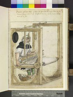 Amb. 279.2° Folio 41 recto