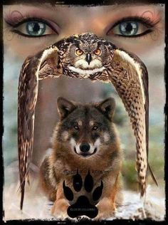 Tattoo for men wolf native american wolves Ideas Wolf Images, Wolf Photos, Wolf Pictures, Animal Spirit Guides, Wolf Spirit Animal, Wolf Tattoos, Art Indien, Native American Wolf, Wolves And Women