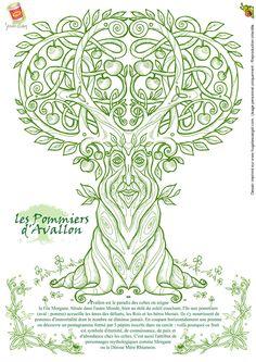 ✿ Tattoos ✿ Celtic ✿ Norse ✿ Séverine Aubry - Les pommiers d'Avallon
