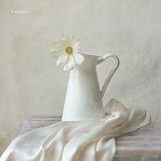 Still life with white flower by MargoLuc, via Flickr