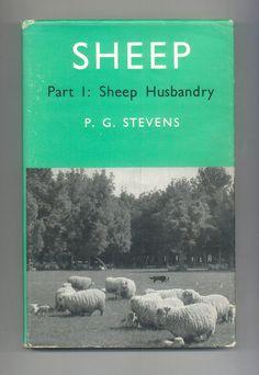 Sheep and Sheep husbandry New Zealand Wool Ranching Shepherding and Animal Husbandry 1967