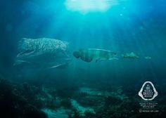 Menos 1 Lixo: We are the oceans biggest predator