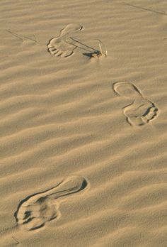 Foot prints in the sand at a desolate beach, oh the serenity.