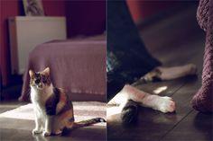 Lazy Weekend | Flickr – Compartilhamento de fotos!