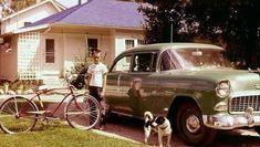 1955 Chevy, 1955 Chevrolet, Nostalgic Pictures, Vintage Pictures, Vintage Cars, Antique Cars, Us Cars, Car Travel, Life Photo