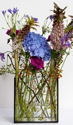 wild--Blumenkraft