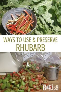 Rhubarb, that early rising perennial that you can completely ignore and know it will keep coming back in garden zones 3 to With such a prolific producer, the more ways to preserve and use rhubarb you know the better! Canning Recipes, Raw Food Recipes, Healthy Recipes, Jar Recipes, Freezer Recipes, Freezer Cooking, Drink Recipes, Rhubarb Fruit, Rhubarb Wine