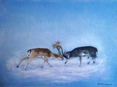 Fallow Deer Fighting Irish Art