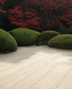 103 Beispiele für moderne Gartengestaltung